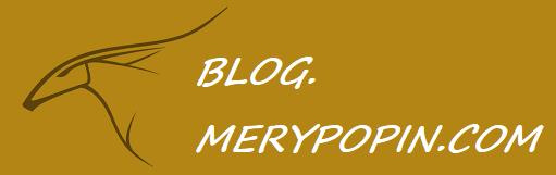 blog.merypopin.com
